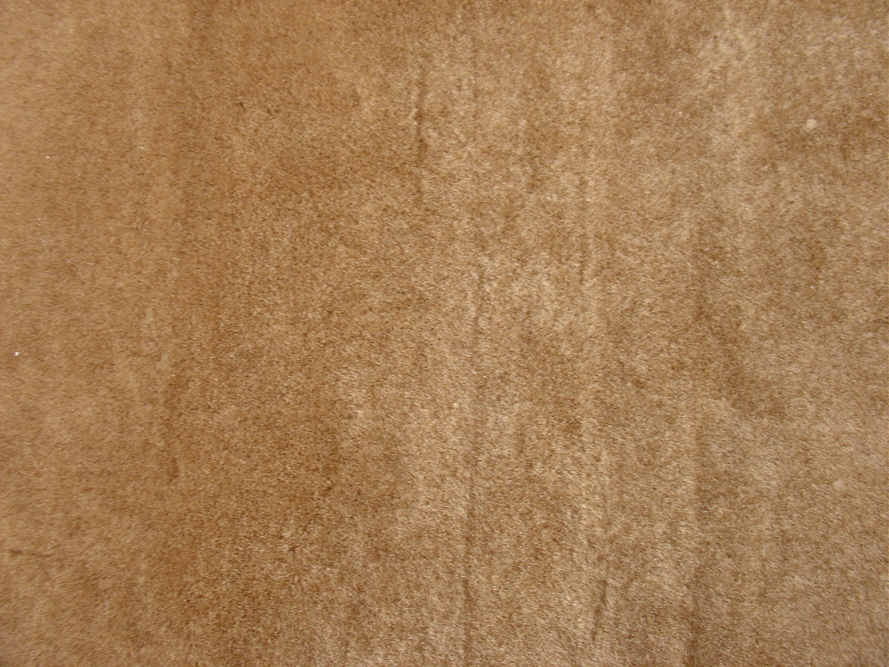 All Trends Pte Ltd Sheep Fur
